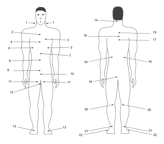 Vital points human body